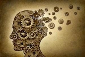 چرا به علوم انسانی نیاز داریم؟