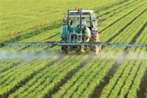 ۱۵ هزار میلیارد به تقویت صندوق بیمه محصولات کشاورزی اختصاص یافت