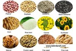 تولید کاغذهای هنری آنتیباکتریال  با استفاده از دانههای گیاهی