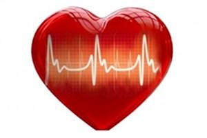 تشخیص بیماری های قلبی با مکان یابی دریچه های قلب