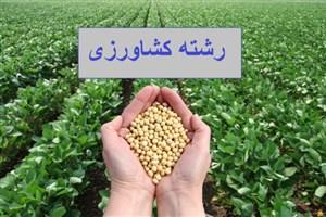 اندر احوالات رشته کشاورزی؛ بازار کار و چالش های پیش رو