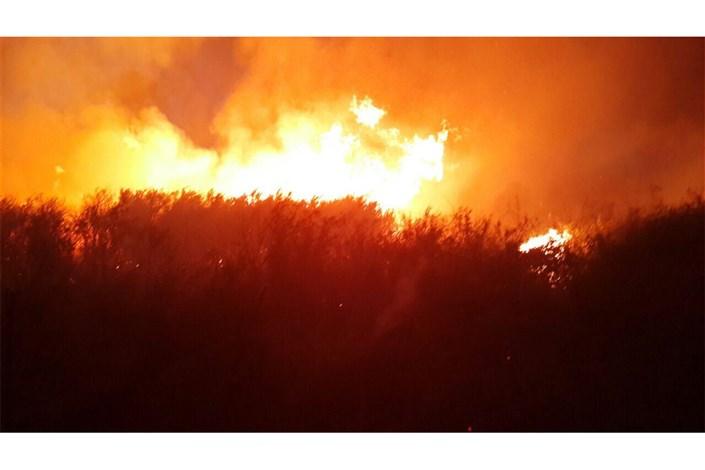 آتش سوزی در میانکاله