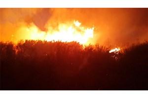 تالاب بین المللی میانکاله  در آتش می سوزد