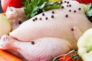 قیمت مرغ افزایش می یابد؟