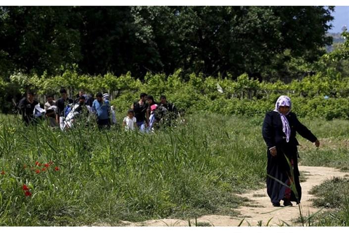 مهاجرت به شمال