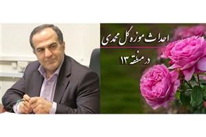 احداث موزه گل محمدی برای اولین بار در کشور