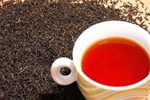 صادرات چای ممنوع می شود؟