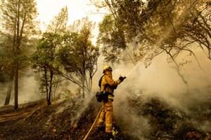 نابودی طبیعت کالیفرنیا در آتش