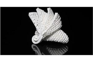 Hong Kong Engineers Develop 4D Printed Ceramics