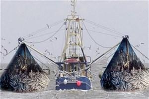 بهرهبرداری از دریای عمان نباید به قیمت نابودی ذخایر آبزی باشد