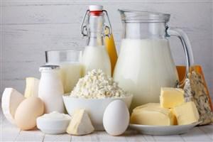 کمبودی در تولید شیر خشک نداریم/ ترجیح تولیدکنندگان داخلی بر صادرات