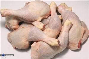 قیمت مرغ کاهش مییابد