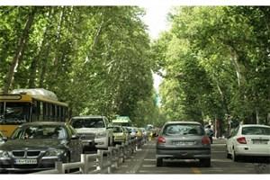 بیش از یک میلیون درخت در تهران شناسنامهدار شدند