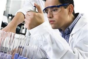 افزایش بیماریهای مشترک انسان و دام/ وجود ۴۰۰ نوع میکروب در روده انسان