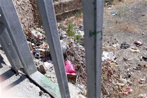 پیگیری  درخواست مردمی  محله کاووسیه/+عکس