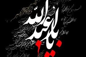 ویژه برنامه «شعارات الکربلا» از شبکه الکوثر پخش می شود