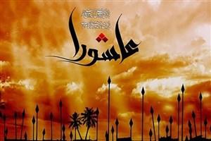 ویژه برنامه  «من ارض الطفوف» از شبکه الکوثر پخش می شود