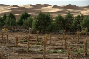 Scientists May Bring Rainfall in the Sahara Desert