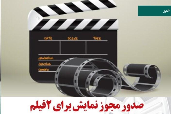 سازمان امور سینمایی