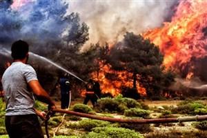 شمار قربانیان آتش سوزی در یونان افزایش یافت
