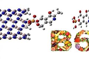حفاظت ویتامینهای گروه B از طریق روش محاسبات مکانیک کوانتومی