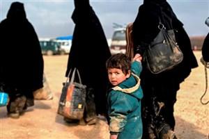 مقامات حلب بر کمک به بخش کشاورزی تاکید کردند