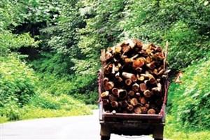 طرح تنفس راهی برای ادامه ی حیات جنگل ها