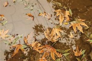کاهش ۵۲ درصدی بارش در حوضه دریای خزر