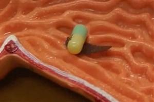 ربات هزارپایی که به داخل بدن دارو میرساند