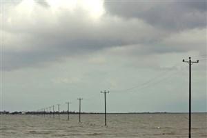 تولید برق از امواج دریای خزر به کمک «نهنگ مقتدر» بررسی شد