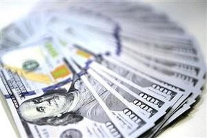 احتمال سقوط آزاد قیمت ارز/خرید دلار ریسک زیادی دارد
