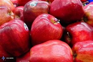 چرا باید روزانه یک سیب ناشتا بخوریم/ خواص بسیار خوردن روزی یک سیب قرمز