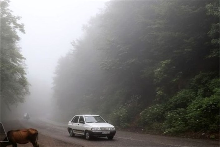مه گرفتگی