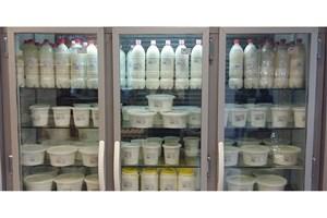 افزایش ۵.۷ درصدی شیر در کشور/ خودکفایی در تولید شیرخشک