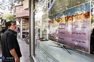 دبیرکل کانون صرافان ایران: تعادل در بازار ارز حاکم است