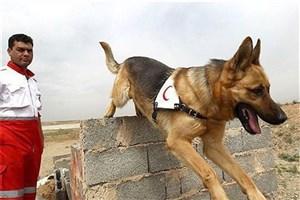 پرورش سگهای زنده یاب در پایگاه ویژه مدیریت بحران شرق تهران