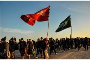 جزئیات برنامه های دانشگاه آزاد اسلامی برای پیاده روی اربعین