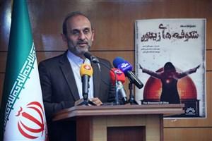 جبلی: گفتمان انقلاب اسلامی محور تولیدات مستند برون مرزی است