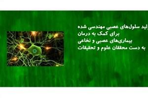 تولید سلولهای عصبی مهندسی شده برای کمک به درمان بیماریهای عصبی و نخاعی؛