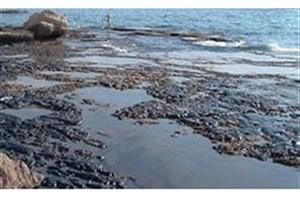 برگزیدگان چالش فناوری «ساخت مواد جدید جاذب آلودگیهای نفتی» به رقابت میپردازند