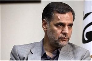 نقوی حسینی: دستگاه ها از اشخاصی که مرتکب سرقت علمی می شوند، شکایت کنند
