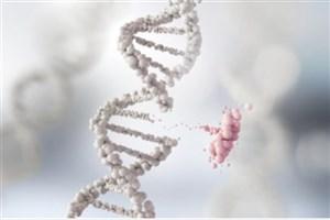 نتایج جدید تحقیقات در مورد سرطان منتشر شد