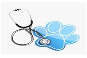 رفع نیازهای داخلی کشور با تولید داروهای مورد نیاز صنعت دامپزشکی