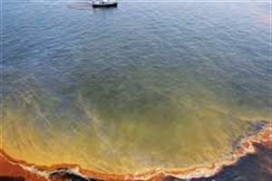 ساخت غشائی برای جدا کردن نفت از آب با کارایی 99.99 درصد