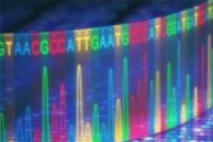همکاری دو شرکت برای ارائه فناوری تشخیص اختلاف ساختاری ژنوم