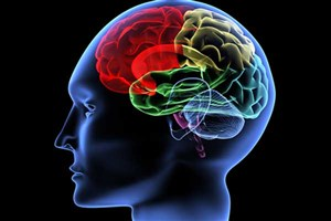 افقی روشن در پیشگیری و درمان بیماریهای سیستم عصبی به کمک نانوسامانهها