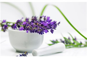 ضرورت بومیسازی دانش و فناوریهای پیشرفته گیاهان دارویی