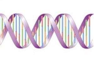 تخریب DNA با ذرات معلق هوای تهران