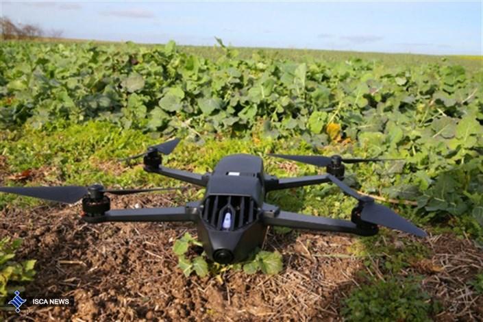 هوش مصنوعی کشاورزی
