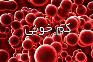 فکر میکنید کم خونی دارید؟/ این برنامه موبایل را نصب کنید